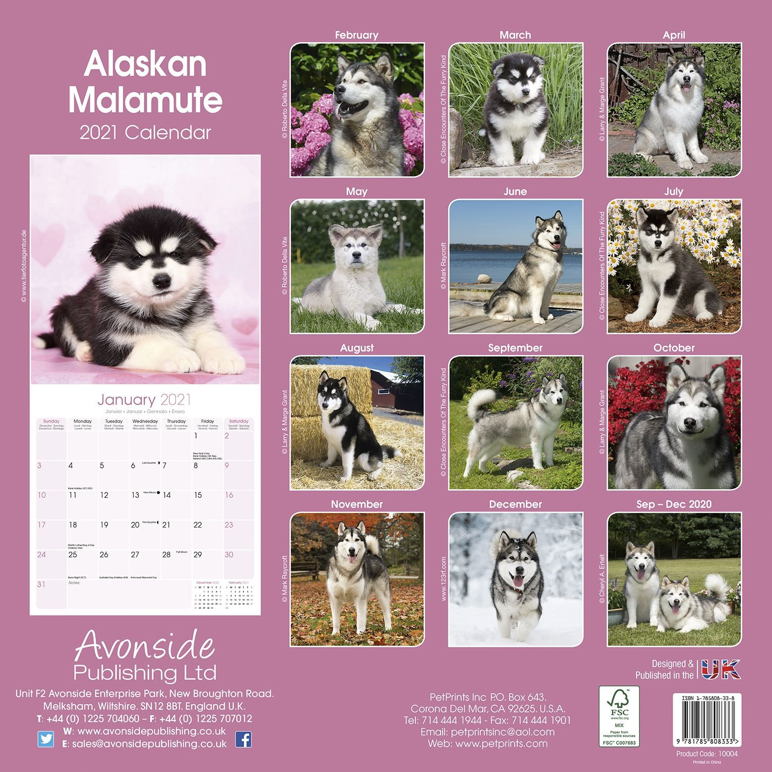 Life With Malamutes Calendar – 16,445 likes · 35,120 talking about this.