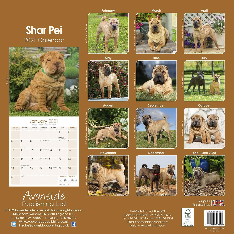 Shar Pei 2020 Dog Calendar 15/% OFF MULTI ORDERS!
